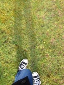 walkgrass